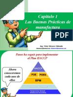 Capitulo 1 - Las Buenas Practicas Manufactura