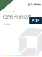 Du Certificate Dcrum Professional Blueprint April 2017 (1)