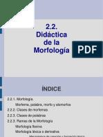 221808638-2-2-Morfologia