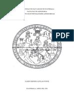 Tesis X1.pdf
