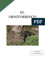 El Ornitorrinco