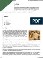 Water vascular system - Wikipedia, the free encyclopedia.pdf