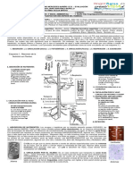 Guía 9. Modelizo La Nutrición de Las Plantas Con Una Especie De Un Humedal Bogotano. 2017.