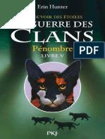 Hunter, Erin - [La Guerre Des Clans III, Livre 5] - Pénombre (2013, Pocket Jeunesse, 978-2-823-80598-7)