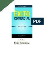 Steven Pavlina - Exito Comercial