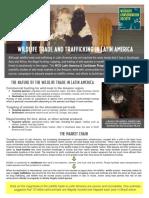 Wildlife Trafficking Factsheet for LACP_Nov 11