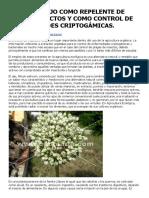 EL USO DEL AJO COMO REPELENTE DE PLAGAS INSECTOS Y COMO CONTROL DE ENFERMEDADES CRIPTOGÁMICAS. _ ecomaria.pdf