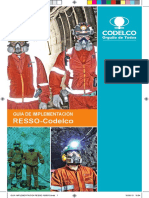 Guia Implementación RESSO.
