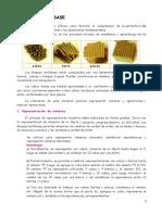 bloques_multibase PARA DISEÑOS DE LA MATEMATICA.pdf