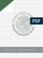CAP014 Control de calidad túnel.pdf