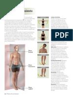estiramiento.pdf