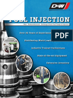 DW1020 Fuel Injection Brochure