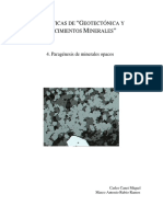 Paragenesis de Minerales Opacos