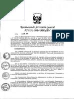 directiva control de combusRSG-N°-006-2014-MINAM