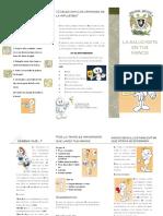 120849549-influenza.pdf