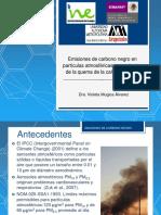 2012_estudio_cc_inegei4b(1)