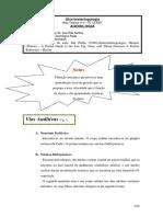 58390976-Aula-4-Audiologia.pdf