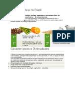 2-O Agronegócio No Brasil