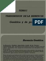 Transmision de La Herencia