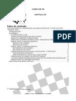 CursoVB20.pdf