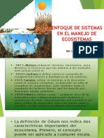 02 Enfoque de Sistemas en El Manejo de Ecosistemas Caso Apurimac