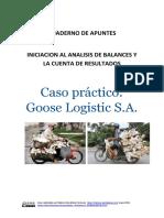 Caso Practico Goose Logistic