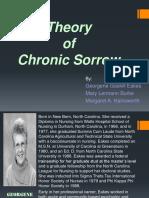 Theory of Chronic Sorrow