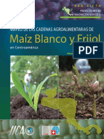 Mapeo de Las Cadenas Agroalimentarias de Maiz Blanco y Frijol en Centroamerica (RED-SICTA).