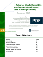 research-better-understanding-middle-report.pdf