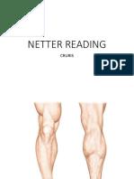 Netter Reading Cruris Tri