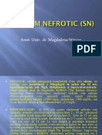Sindrom Nefrotic (Sn)