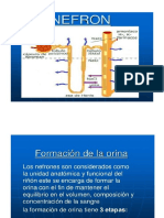 Examen Completo Orina(2)(1).pptx