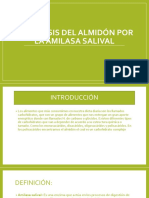 Hidrólisis Del Almidón Por La Amilasa Salival