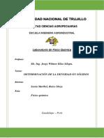 Informe 03 Determinacion de Densidad en Sólidos SONIA RAICO