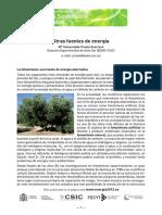 Otras fuentes de energía, la fotosíntesisOK.pdf