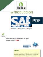 Introducción SAP.pdf