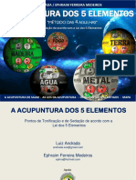 AcupunturaSaam_ebook.pdf