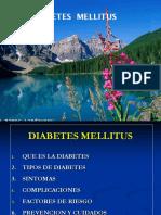 DIABETES PROYECTO.ppt