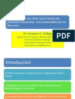 Plantas Nativas de Chile Como Fuente de Productos