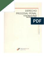 235585567-Maturana-Miquel-Cristian-y-Otro-Derecho-Procesal-Penal-Tomo-1.pdf