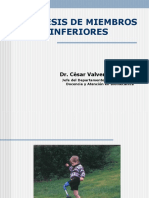 Ortesis y Protesis II