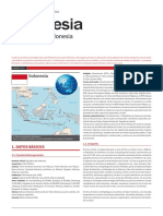 INDONESIA_FICHA PAIS.pdf