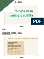 Artrologia de La Cadera y Rodilla