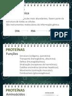 proteinas-enzimas