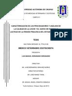 05 0904 Tesis Luis Hernandez UNACH