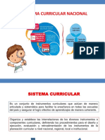 Sistema Curricular Nacional