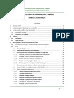 1. Informe Puentes y Alcantarillas