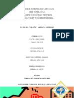 Inventigacion MicroPequeña y Mediana