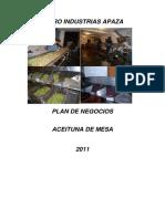 Plan de Negocios Agro Industrias Apaza