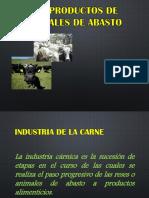 SUBPRODUCTOS GANADEROS.pdf
